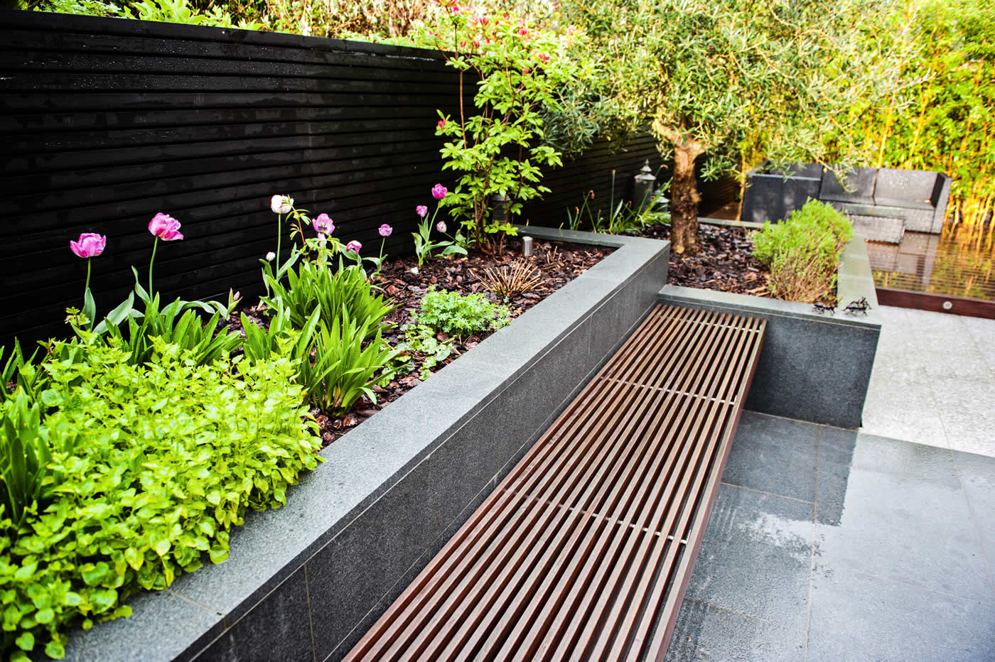 Chic modern garden design in chelsea by declan buckley with steps and - Contemporary Garden Ascot