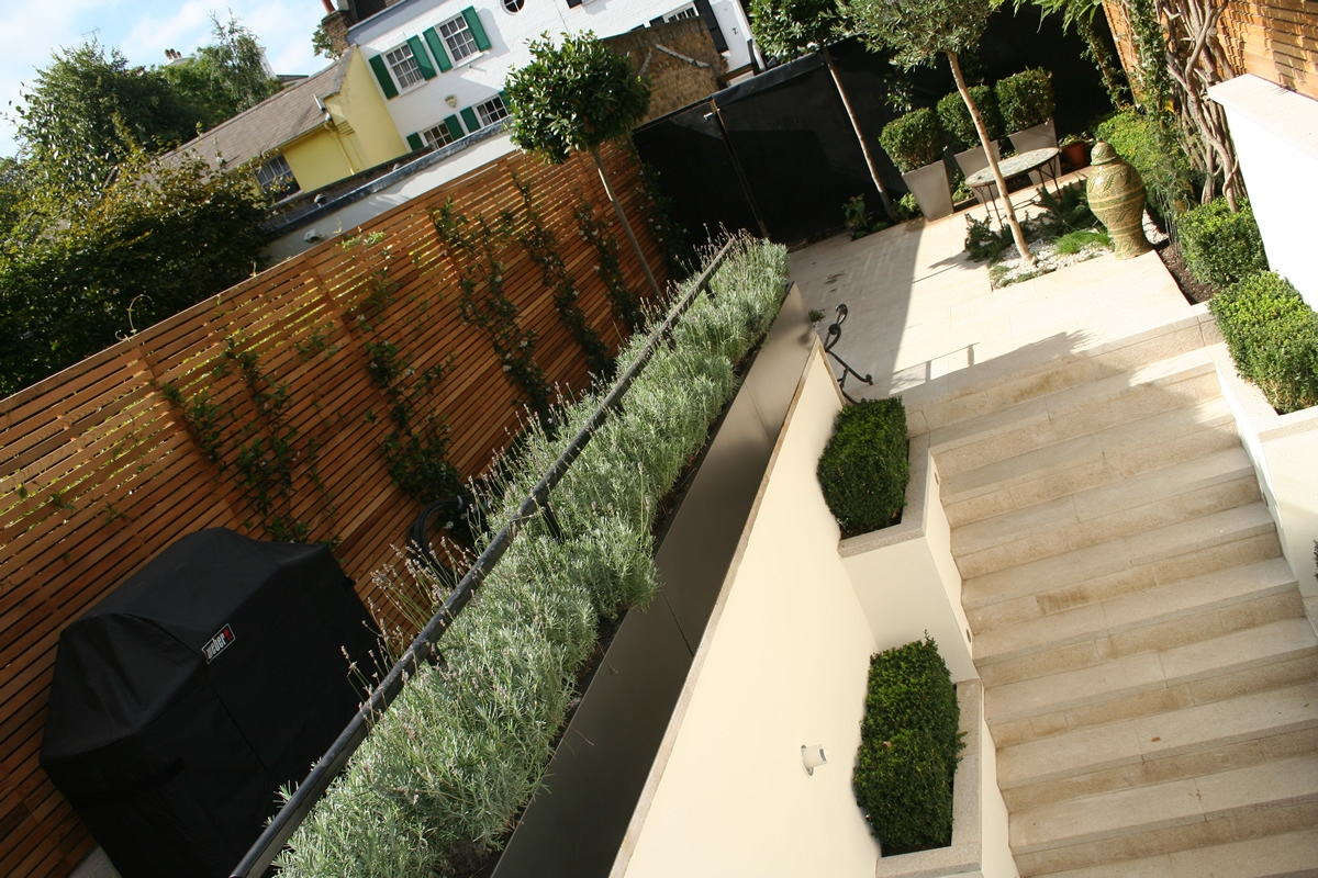 Chic modern garden design in chelsea by declan buckley with steps and - Chic Modern Garden Chelsea