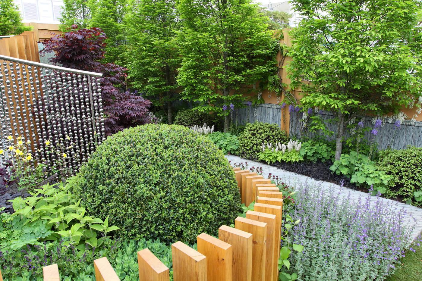 rhs garden design | Fasci Garden